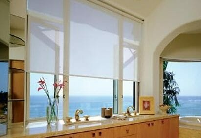 black window roller shades