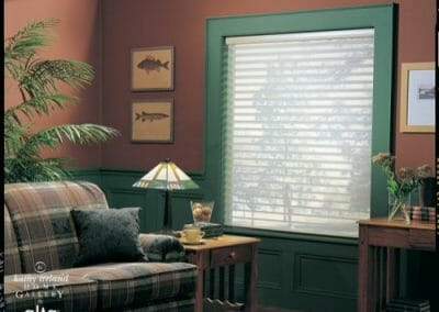 custom silhouette shadings